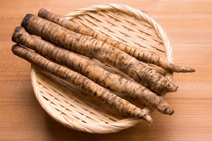 отвар из корней лопуха для печени