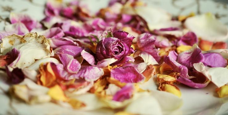 польза розовых лепестков